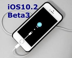 How to Upgrade iPhone to iOS 10.2 Beta3 Using 3uTools?