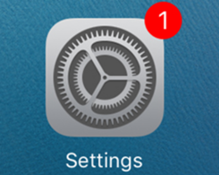 """How to Remove The """"1"""" Badge On Settings App After Jailbreaking?"""