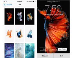 How To Set and Use Live Wallpaper On iPhone7?