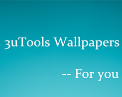 The Most Popular Wallpapers of 3uTools in this Week