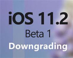 You Can Downgrade iOS11.2 Beta to iOS 11.0.1, iOS11.0.2, iOS 11.0.3 Or iOS 11.1