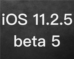 How to Upgrade iPhone / iPad to iOS 11.2.5 beta5?