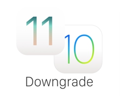 DowngrA7e: Downgrade Your A7 iDevice to 10.3.3 With SHSH2 Easily