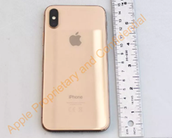 Apple's Unreleased Gold iPhone X Revealed by FCC
