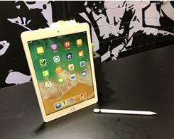 Apple iPad Expands to 28.8% in Contracting Tablet Market