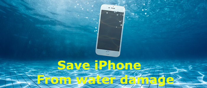 How to Save an iPhone/ iPad From Water Damage?