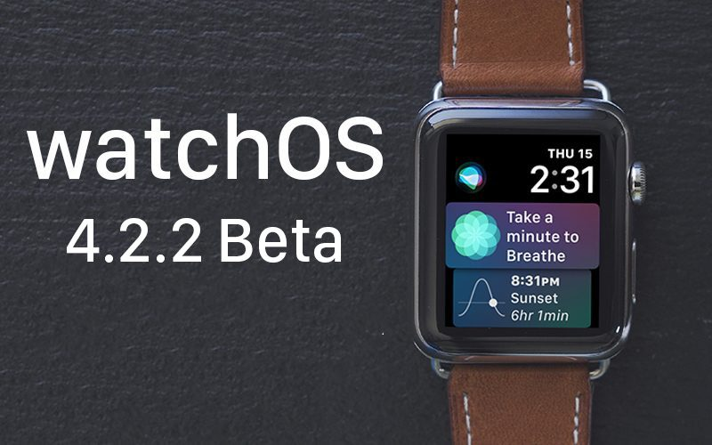 Apple Seeds Fourth Beta of watchOS 4.2.2 to Developers