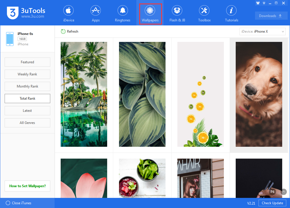 How to Download Wallpaper Using 3uTools?