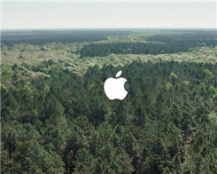 Apple Protected Forestland to Cover Its Paper Packaging