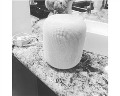 HomePod Hardware Pops up in China And California Ahead of December Launch
