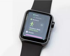 Bye-Bye Twitter App for Apple Watch