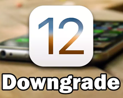 How to Downgrade iOS 12 Beta, iOS 11.4 to iOS 11.3.1?