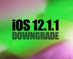 How to Downgrade iOS 12.1.1 to iOS 12.1 Using 3uTools?