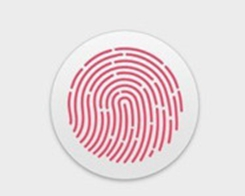 ​Apple to Simplify Safari AutoFill with Touch ID Support in macOS 10.4.4