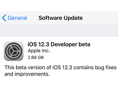 Apple Releasing First iOS 12.3 Beta for Developers Today