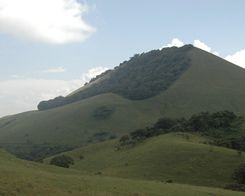 Apple Teams up With Conservation International to fund Restoration in Kenya's Chyulu Hills