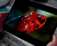 OLED Could Replace TFT Screens on iPads in 2022
