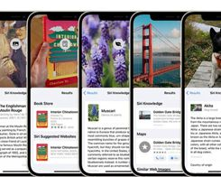 iOS 15: How to Use Visual Lookup in Photos to Identify Landmarks, Plants, and Pets